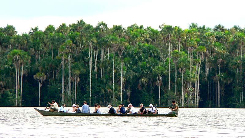 Amazon Nature – Sandoval lake Reserve 4 days